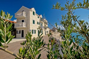 Bibinje-am-Wasser-und-Olivenbaum
